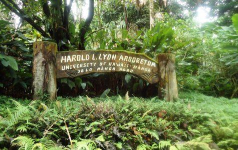Lyon Arboretum Expansion